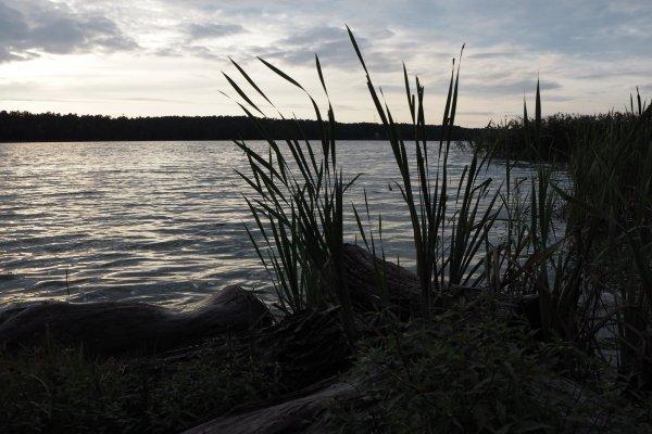 Агроусадьба с баней на берегу озера