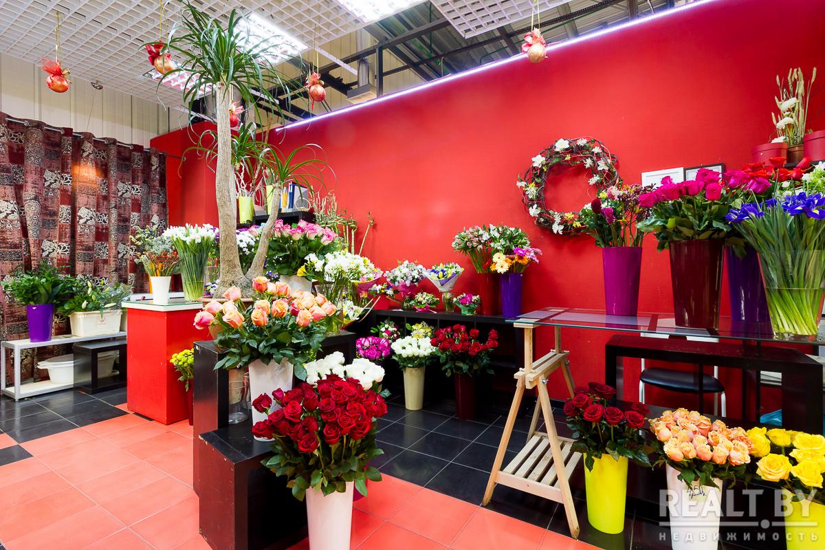 Магазин цветов для дачи волгоград